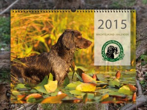 Titelbild Wachtelhundkalender