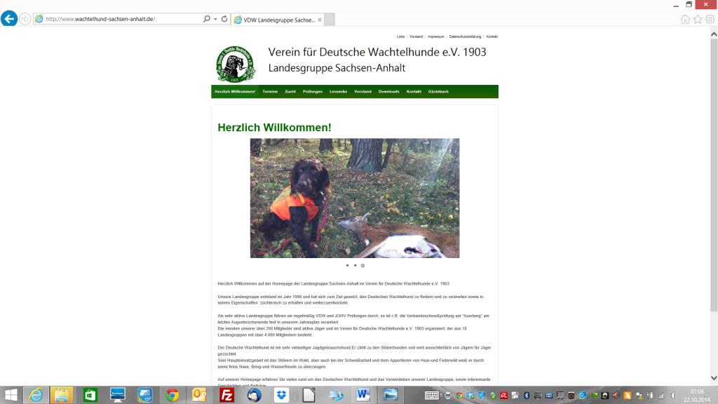 Internetseite Sachsen-Anhalt