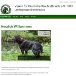 vdw-brandenburg