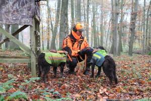 Alexander Busch mit Wachtelhunden