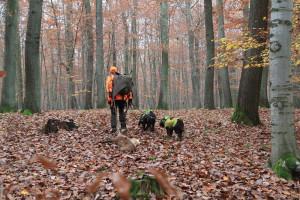 Alexander Busch mit seinen Wachtelhunden