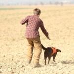 wachtelhund-jugendpruefung-stoeberhund020