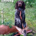 deutsche-wachtelhund-zeitung-juli-august