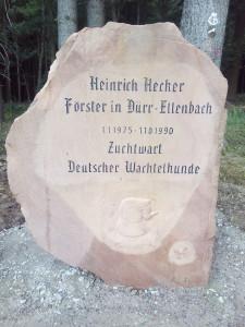 heckerstein