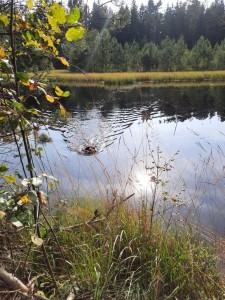 LG Oberbayern: Wasserübungstag